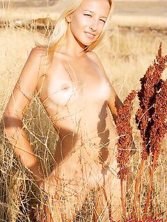 Блондинка в поле